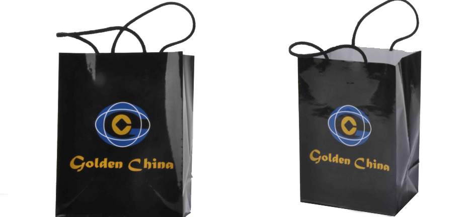 Paper Bags Custom art paper shopping bag